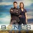 Sarah McLachlan Bones (Original Television Soundtrack)