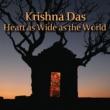 Krishna Das My Foolish Heart/Bhaja Govinda