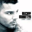 Ricky Martin I Don't Care