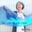 「猫十字社」 The lay of the land