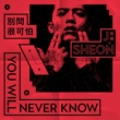 J.Sheon You'll Never Know / Don't Ask