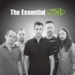 311 The Essential 311