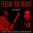 Albert King Feelin' The Blues - Diggin' The Rhythm 2