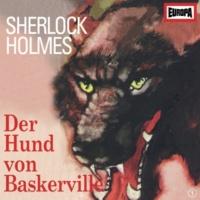 Sherlock Holmes 01 - Der Hund von Baskerville (Teil 10)