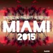 Ananda Project Miami 2015