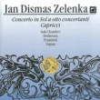 Suk Chamber Orchestra Capriccio No. 1 in D major, ZWV 182: I. Andante, allegro