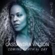 Cassandra Wilson Don't Explain