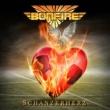 Bonfire Schanzerherz