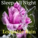 Relaxing Mindfulness Meditation Relaxation Maestro Nature Rain Sounds for Anxiety, Meditation and Yoga, Beat Insomnia Sleep All Night Natural Sounds Loopable Rain Compilation