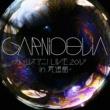 GARNiDELiA
