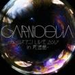 GARNiDELiA GARNiDELiA ~リスアニ!LIVE 2017 in  武道館~