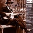 Blind Boy Fuller Homesick & Lonesme Blues