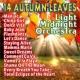 Light Midnight Orchestra 14 Autumn Leaves 1983