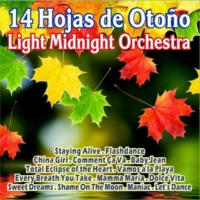 Light Midnight Orchestra Every Breath You Take