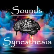 Union of Sound Sounds of Synesthesia