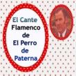 El Perro de Paterna El Cante Flamenco de el Perro de Paterna