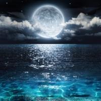 Sleep Sounds of Nature, Musica para Estudiar, Zen Music Garden Stress Relief