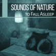 Sounds of Nature Sounds of Nature to Fall Asleep ‐ Sleep Music, Lullabies for Deep Sleep, Easy Sleep, Relaxing Music, Pure New Age Relaxation