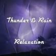 Rain Sounds & Nature Sounds|Sounds Of Nature : Thunderstorm, Rain|Lightning, Thunder and Rain Storm Thunder & Rain Relaxation