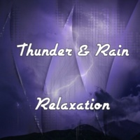 Rain Sounds & Nature Sounds|Sounds Of Nature : Thunderstorm, Rain|Lightning, Thunder and Rain Storm Metal Dings While A Storm Rages On