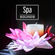 Meditation Spa Spa Sounds ‐ Relaxation, Music for Massage, Wellness, Spa Music, Healing Lullabies to Rest, Asian Music, Nature Sounds for Body & Mind