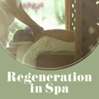 Relaxing Spa Music Meditação