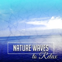 Nature Sounds Relaxation: Music for Sleep, Meditation, Massage Therapy, Spa Outdoors Sounds