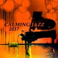 Piano Jazz Calming Music Academy Brush of Lips