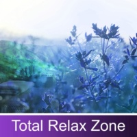 Nature Sound Collection Instrumental Relaxation