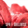 Zen Spa & Wellness ‐ Soft Music to Calm Down, Healing Spa, Deep Massage, Harmony, Silence, Soothing Sounds, Stress Relief, Spa Music