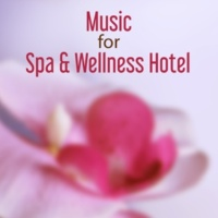 Wellness Pure Relaxation: Meditation Spa
