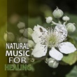 Nature Sounds Natural Music for Healing ‐ New Age Calmness, Music to Help You Relax and Calm Your Mind, Healing Touch