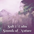 Sounds of Nature Relaxation Soft & Calm Sounds of Nature ‐ Rest & Relax, Easy Listening, New Age Relaxation, Soothing Sounds