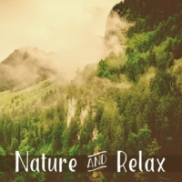 Deep Sleep Relaxation Rest in Naure