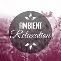 Relaxation - Ambient Well Being