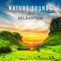 Nature Sounds for Sleep and Relaxation, Relaxation And Meditation Few Drops