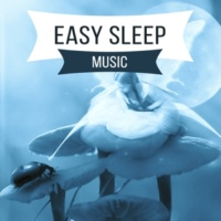 Easy Sleep Music Restful Sleep