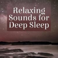 Calm Ocean Sounds Just Sleep