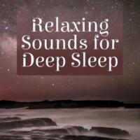 Calm Ocean Sounds Dreamtime