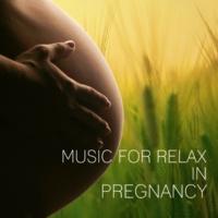 Correct Development of Child Academy Piano Concerto No. 17 in G Major, K. 453: III. Allegretto