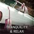 Musique de Réflexion Academy Tranquility & Relax ‐ Soft Sounds to Rest, Pure Relaxation, Classical Melodies at Night, Bach, Mozart, Beethoven