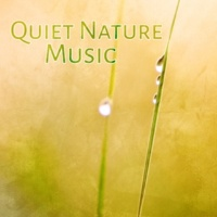 Nature Sounds Artists Calming Waves