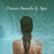 Spa, Relaxation and Dreams Nature Sounds & Spa ‐ Healing Music, Deep Sleep, Pure Massage, Relaxation Waves, Spa Music, Restful Wellness, Calmness