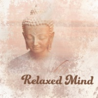 Mindfullness Meditation World Restful Break
