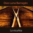Pepe Luna&Fernando Barragán/Mario Gusso La Vicuñita