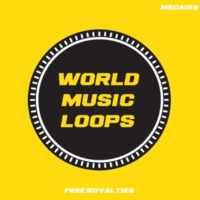 Kotto World Music Loops 128