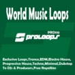 Steik1 World Music Loops 128