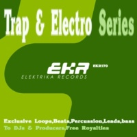 Dubmaan Trap & Electro Series Loops Bass 128