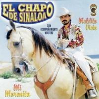 El Chapo de Sinaloa El Compa Beto
