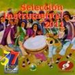 Various Artists 37 Mono Núñez Selección Instrumental 2011